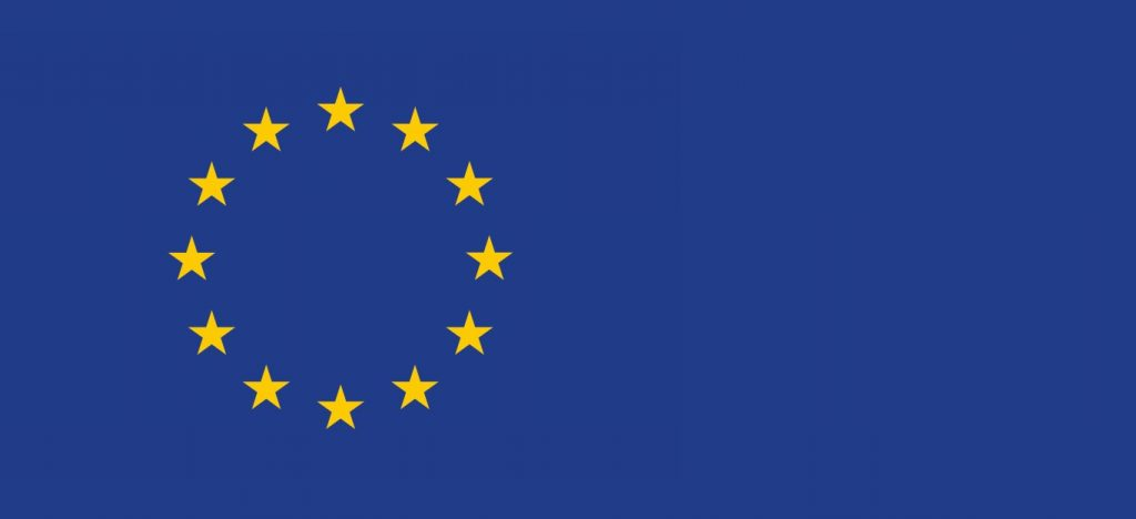 GDPR EU FLAG (Medium)