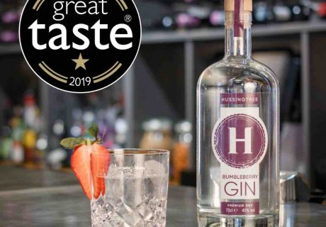 Great Taste Star Bumbleberry Dry Gin – square