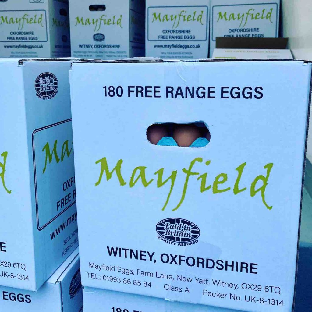 Mayfield Eggs 3[4]