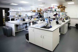 Newly converted laboratory space at the Wood Centre for Innovation[2]